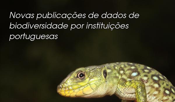 Novas Publicações de dados por Portugal